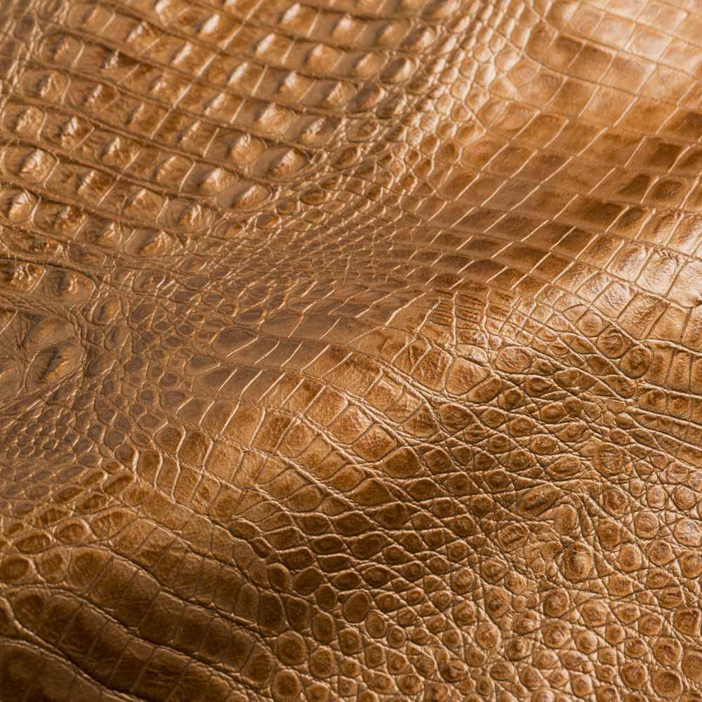 Stampa alligatore - Stampa animalier