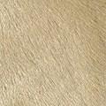 Pelli a pelo tinta-unita - col. P224