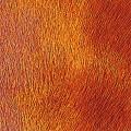 Pelli a pelo tinta-unita - col. P240