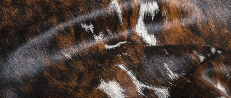 pelli-pelo-naturali-header
