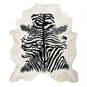 Zebra somalia stampata