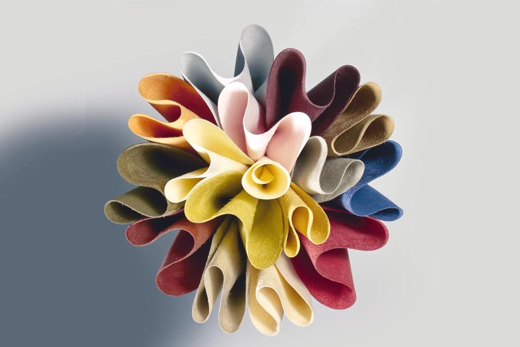 Crescono i colori nel giardino Cuoium