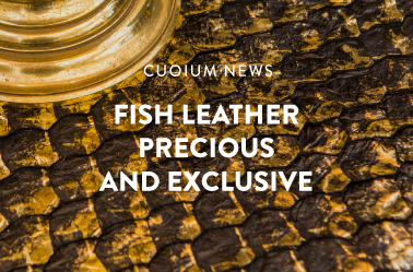 Fish leather - Precious and Exclusive